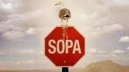 Boycott SOPA: The Android app that identifies products sold by SOPA-backing companies | Collateral Websurfing | Scoop.it