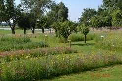 Nos échappées belles : Ecouflant, Jardinographie | Labyrinthes pédagogiques | Scoop.it
