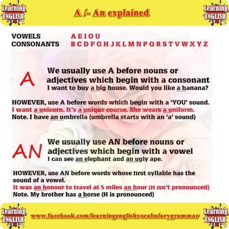 A / an / the the basic English grammar - Learning English vocabulary and grammar   Learning Basic English, to Advanced Over 700 On-Line Lessons and Exercises Free   Scoop.it