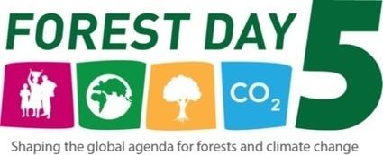 Une révolution technologique pour freiner l'exploitation forestière illégale | Chuchoteuse d'Alternatives | Scoop.it