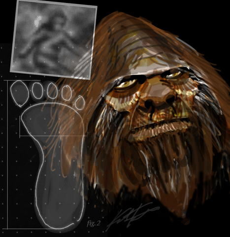 10 Most Active 'Bigfoot Sites' in the US | Bigfoot Mythbusted | Scoop.it