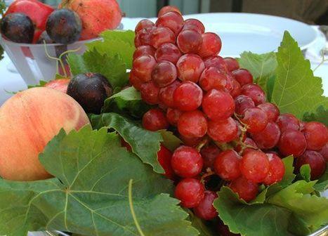 111 Herbs, Vegetables, Edible Flowers, & Fruit to Plant in Your Kitchen Garden | Kitchen Garden | Edible Gardening | Scoop.it