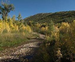 Rising temperatures challenge Salt Lake City's water supply | Sustain Our Earth | Scoop.it