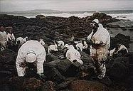 Prestige oil spill - Wikipedia, the free encyclopedia | IB Geography (Diploma Programme) | Scoop.it