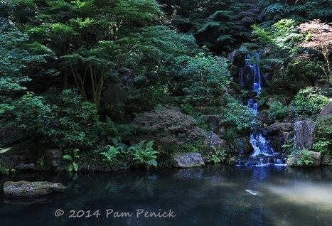 Portland Japanese Garden: Portland Garden Bloggers Fling | Digging | A Love of Japanese Gardens | Scoop.it