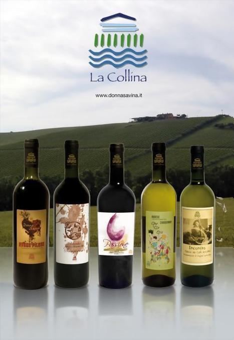 Sea Breeze Wines Le Marche: Donna Savina Wines from La Collina, Fermo | Wines and People | Scoop.it