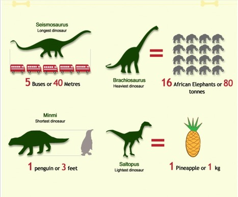 All about Dinosaurs | Visual.ly | Dinosaurs Down Under | Scoop.it
