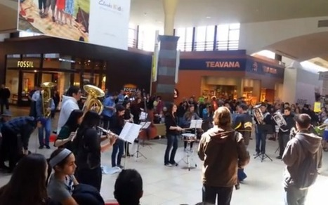 Weird News: Flash Mob Hits the Mall; Local Wine Made Into Frozen Treat - Patch.com | In Today's News of the Weird | Scoop.it