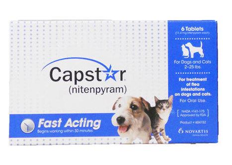 Capstar Get Rid of Fleas from Dogs   Frontline Plus   Scoop.it
