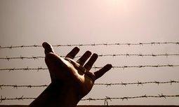 Offshore detention's callous, brutal bureaucracy damns itself | Ben Doherty | children in detention | Scoop.it