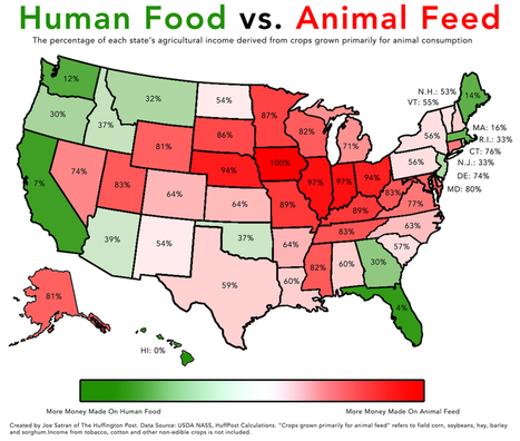 How American Agriculture Works | Human Geography is Everything! | Scoop.it