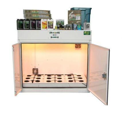 Easy Aquaponics System In Chase Mills   Wellington Aquaponics   Scoop.it