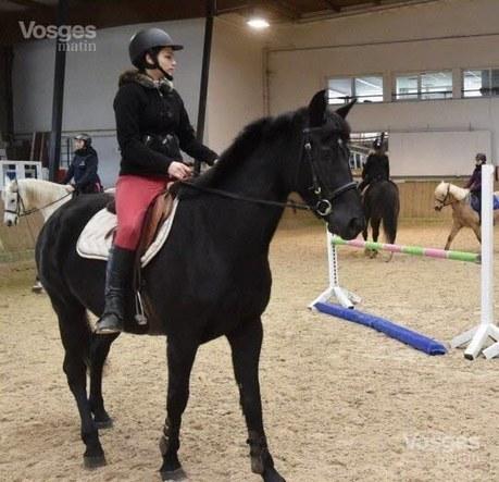 Epinal-Chantraine : les chevaux aiment Bob Marley !   Cheval et sport   Scoop.it