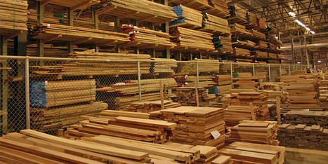 Softwood Lumber Prices Back on the Rise | Timberland Investment | Scoop.it