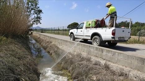 Falta de dinero amenaza el Servicio de Control de Mosquitos del Baix | Recull de premsa del Servei de Control de Mosquits | Scoop.it