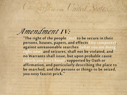 Protecting the Fourth Amendment For The Digital Age | Michael Moore- forth Amendment | Scoop.it