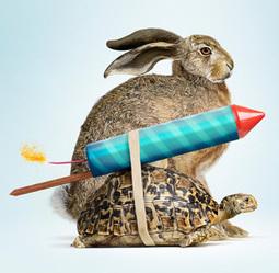 When Innovating, Go Slow - IEEE Spectrum   BRE Ventures   Scoop.it