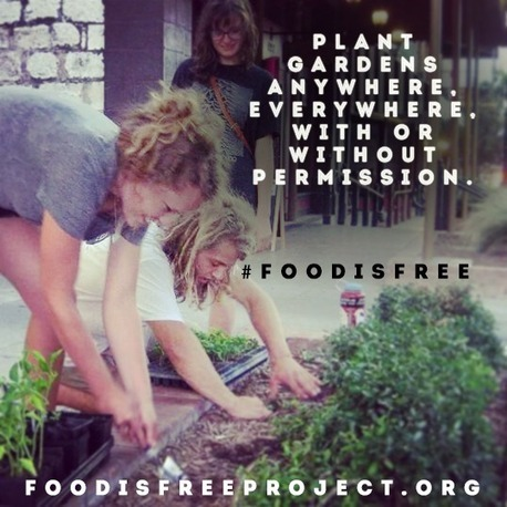 Plant Gardens Anywhere | Heal the world | Scoop.it