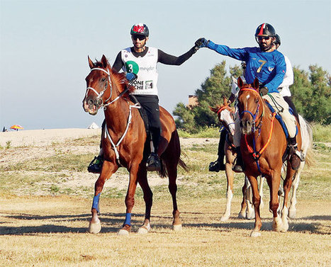 Sport - Stage set for Conero Endurance | Le Marche another Italy | Scoop.it