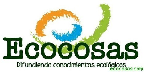 Limpieza ecológica | Ecocosas | DIY | Scoop.it