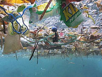 What is the Great Pacific Ocean Garbage Patch?   OUR OCEANS NEED US   Scoop.it