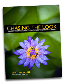 eBook Review: 10 Ways to Improve the Aesthetics of your Photographs by David Duchemin | Find Your Visual Voice | Scoop.it