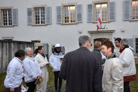 Le Jura va réduire ses pesticides de 50% pour sauver ses abeilles | apiculture 2.0 | Scoop.it