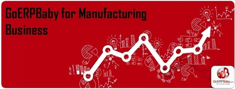How ERP Solution Help Your Manufacturing Business? | ERp software | Scoop.it
