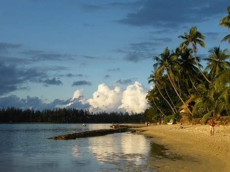Polynésie française : maladies non-transmissibles, attention danger! - Destination Santé | TAHITI Le Mag | Scoop.it