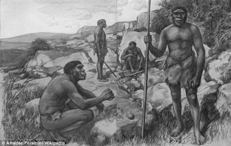 Los homínidos fueron alimento para carnívoros hace 500.000 años | Arqueología, Historia Antigua y Medieval - Archeology, Ancient and Medieval History byTerrae Antiqvae | Scoop.it