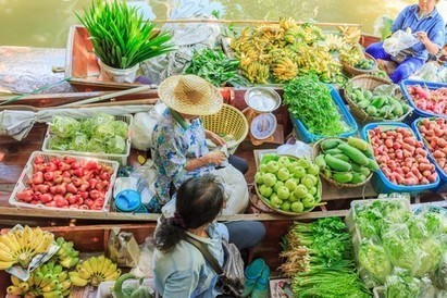 Collaboration crucial to food security in Southeast Asia | Food Security | Scoop.it