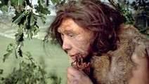 De Neanderthaler was netjes en sporadisch kannibaal | KAP_WalravensM | Scoop.it