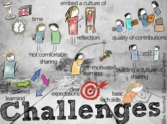Building a Professional Development Hub for your School- Part 3- Challenges | New learning | Scoop.it