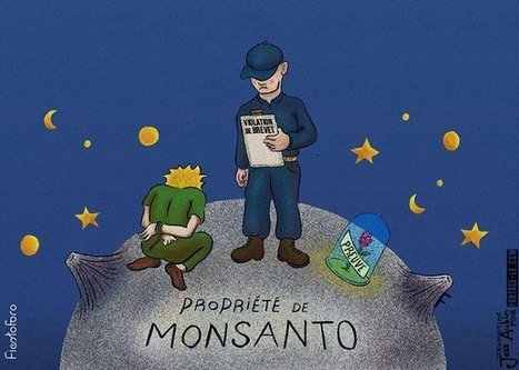 #CADTM - #Monsanto #Bayer=MoBay, le cartel des empoisonneurs contre la planète #herbicides #pesticides | Messenger for mother Earth | Scoop.it