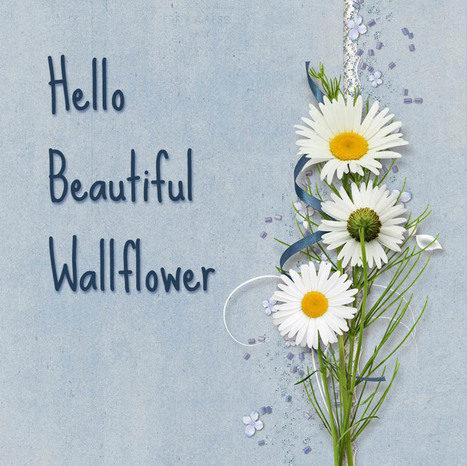 Hello Beautiful Wallflower | Holiday cottages | Scoop.it