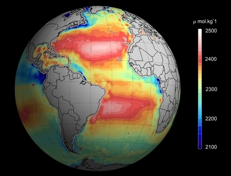 Ocean Acidification, Now Watchable in Real Time | Climate Central | Environment and Biodiversity | Scoop.it