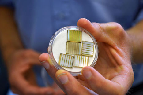 Could These Solar Cells Replace Heavy Solar Panels? | Science, Technology & Education | Scoop.it