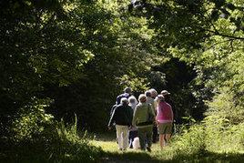 Conservancy nature hikes return - Charlotte Observer | Lorraine | Scoop.it