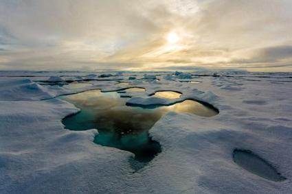 Melt ponds cause the Artic sea ice to melt more rapidly | Sustain Our Earth | Scoop.it