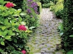 Allées de jardin :  6 bonnes idées | Graviers décoratifs | Scoop.it