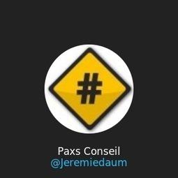 Faite votre Bio Twitter en Video avec Vizify | Vis ma vie de Twitto ! | Infos pros btob & boites à outils de Paxs Conseil | Scoop.it