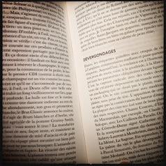 Un apéro de mots. | Les Mots et les Langues | Scoop.it