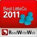 Best LittleCo of 2011   The Big Idea   Scoop.it