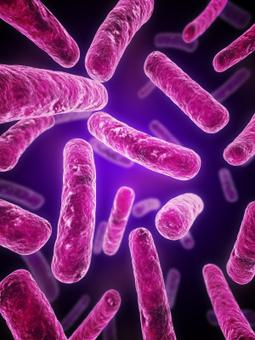 Life in the bacterial underground | Ms. Verret - Student Info | Scoop.it