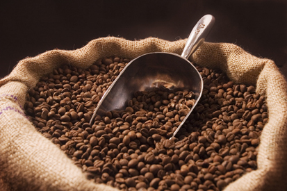 Climate change threatens sweet smell of morning coffee | The Glory of the Garden | Scoop.it