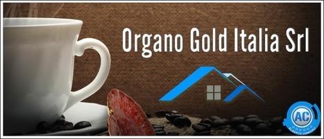 Ecco il Nuovissimo WebSite di Organo Gold | Organo Gold - Distributore Indipendente | Scoop.it