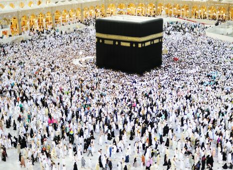 The Endless Public Health Challenges of the Hajj   Random thoughts   Scoop.it