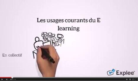 Les nouveaux usages du E learning pour les PME | Grain's Créateur de connaissances | Scoop.it