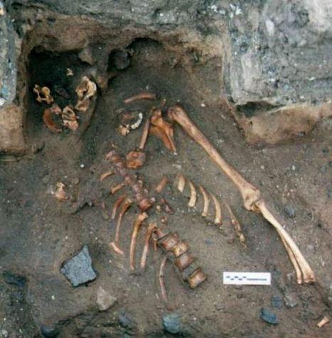 Medieval Murder Victim Identified in Scotland - Archaeology Magazine   Ancient Civilization   Scoop.it