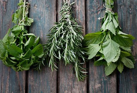 Top 10 Herbs by Nutrient Density | Herbal Healing | Scoop.it